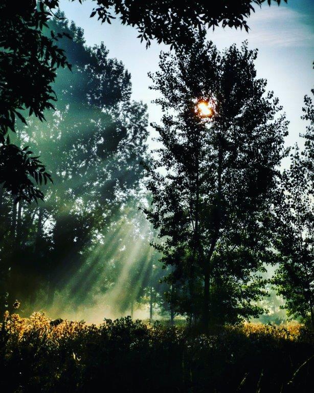 sunrise @?