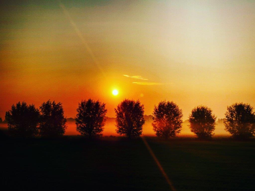 sunrise @ wijboschbroek
