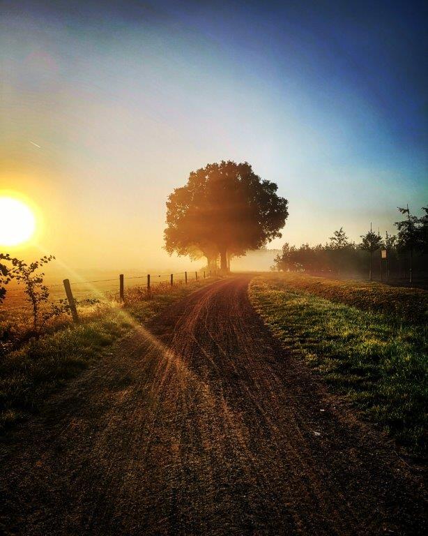 early morning @ gemonde